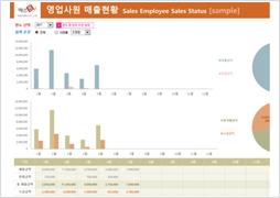 영업사원 매출현황 보고서